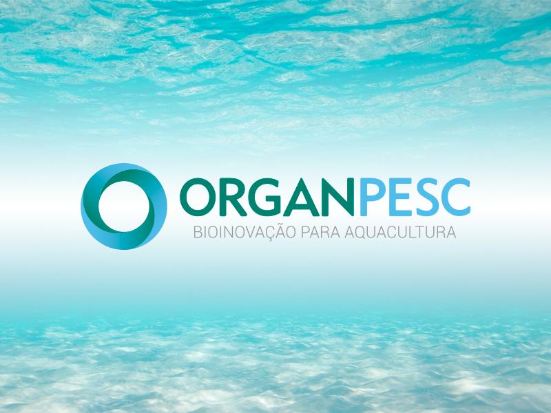 Logo Organpesc